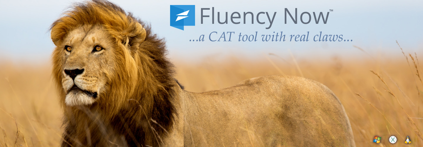 Fluency Now - Translate Smarter